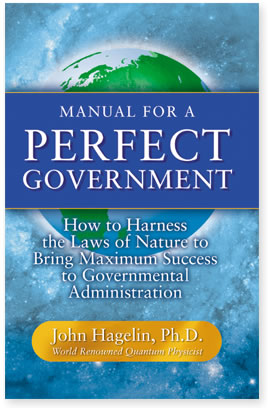 Manual for a Perfect Government